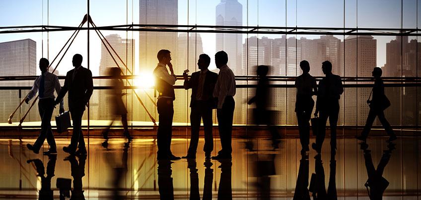 Langauge Link Corporate Courses